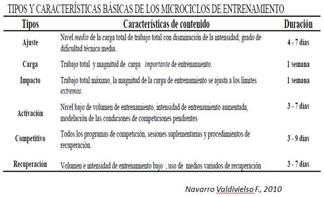 Cuadro clasificación Microciclos