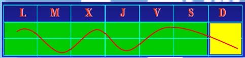 Gráfico Microciclo